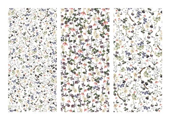 Soundness Flowers (2016)